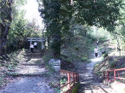 阿夫利神社.jpg